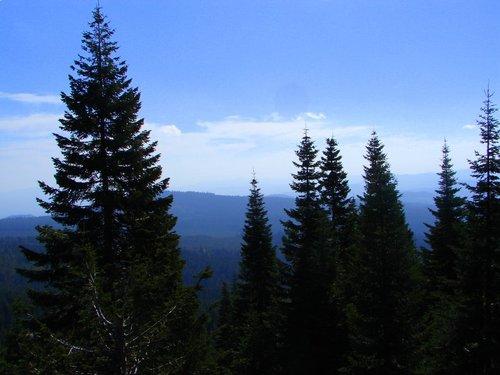 vantage point on mt. shasta