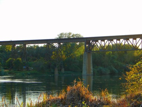 train trestle over water