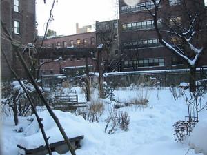 Garden_snow_2
