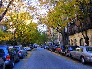 Vanessas_street